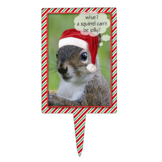 Florida Santa Squirrel™ Fun Christmas Holiday Cake Topper