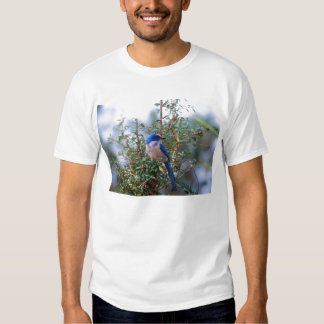 Florida Scrub Jay T Shirt