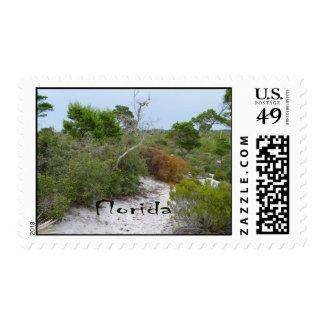FLorida scrub land with text Postage Stamp