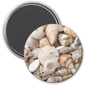 Florida Sea Shell Background - Beach Shells Custom 3 Inch Round Magnet