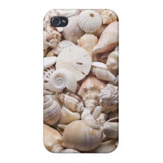 Florida Sea Shell Background - Beach Shells Custom iPhone 4/4S Covers