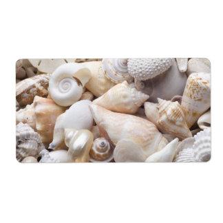 Florida Sea Shell Background - Beach Shells Custom Personalized Shipping Label