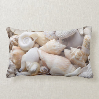 Florida Sea Shell Background - Beach Shells Custom Pillow