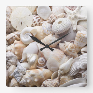 Florida Sea Shell Background - Beach Shells Custom Square Wall Clock