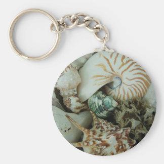 Florida Sea Shells Keychain