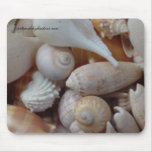 florida sea shells mouse pad