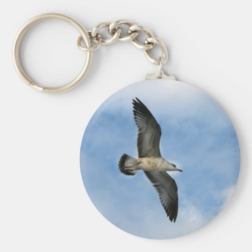 Florida seagull flying against blue sky basic round button keychain