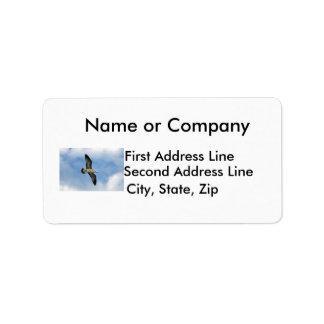 Florida seagull flying against blue sky address label