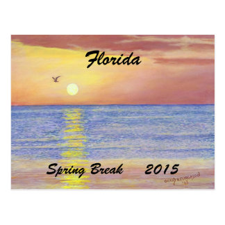 """FLORIDA SEAGULL SPRIING BREAK 2015 POSTCARD"" POSTCARD"