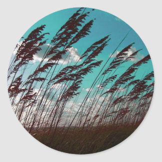 Florida seaoats against teal sky dune backdrop round sticker