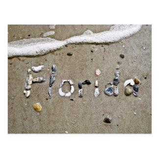 Florida Seashell Postcard