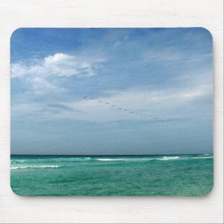 Florida Seashore Mouse Mat