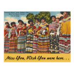 vintage, post card, travel, florida, seminole,