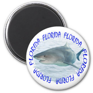 Florida shark magnet