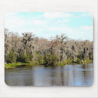 Florida Spanish Moss Trees mouse pad