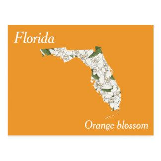 Florida State Flower Collage Map Postcard