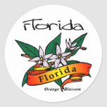 Florida State Flower Orange Blossom Classic Round Sticker