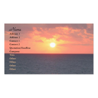 Florida Sunrise Double-Sided Standard Business Cards (Pack Of 100)