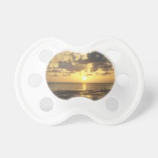 florida sunrise pacifier