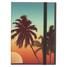 Florida Sunset iPad Air Cases