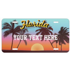 Florida Sunset License Plate