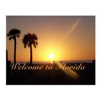 Florida Sunset Post Card