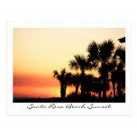 Florida Sunset Santa Rosa Beach Palm Trees Post Card