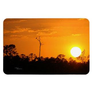 Florida sunset trees Flexi Magnet