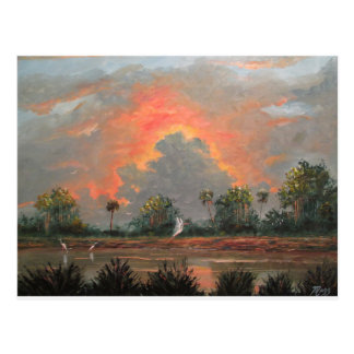 Florida Sunset while Travelling to Okeechobee Postcard