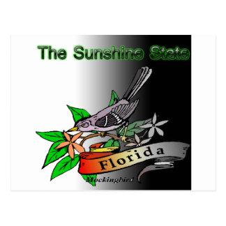 Florida Sunshine State mockingbird Postcard