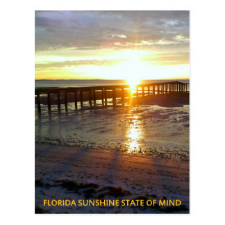 Florida Sunshine State of Mind Postcard
