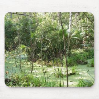 Florida Swamp Mousepads