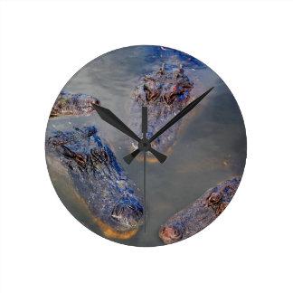 Florida-swimming-hole-design-001 Round Clock