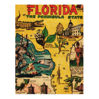 Florida The Peninsula State Postcard
