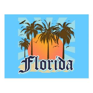 Florida The Sunshine State USA Postcard