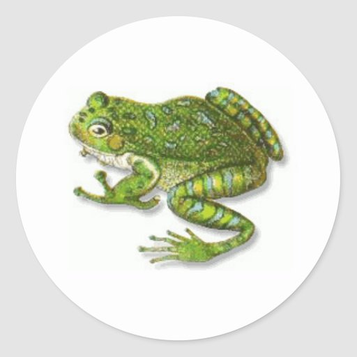 Florida Tree Frog Classic Round Sticker