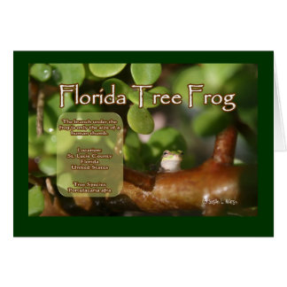 Florida Tree Frog Design with explanation text Greeting Card