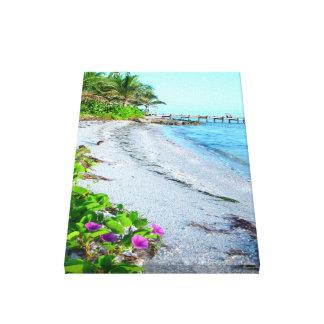 Florida tropical beach Stretched Canvas Print