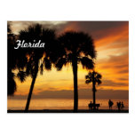 Florida Vacation Postcard