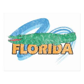 Florida Vintage Postcard