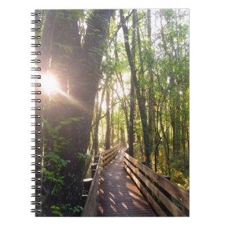 Florida walking path notebook