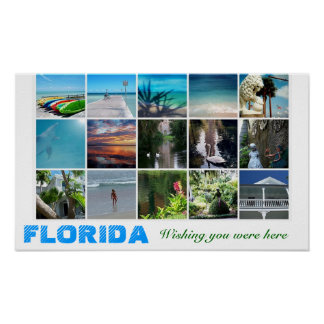 Florida Wishing you were here travel poster collag