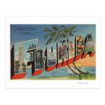 FloridaLarge Letter ScenesFlorida Post Card