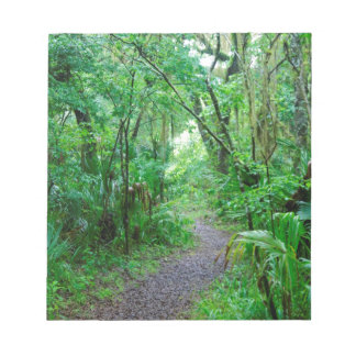 Florida's Enchanted Forest Memo Notepad
