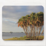 Florida's Paradise Mouse Pad