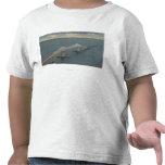 Florida's Sunshine Skyway BridgeFlorida T-shirts
