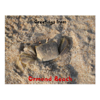 floridatrip 038, Greetings from , Ormond Beach,... Postcard