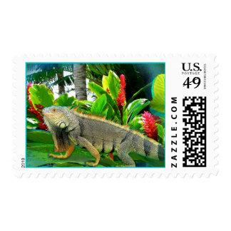 Floridian Iguana Stamp
