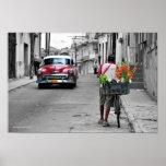Florista cubano impresiones