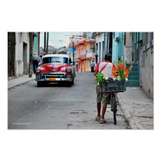 Florista cubano poster